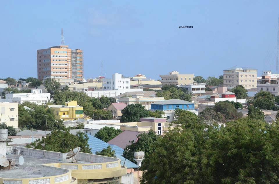 Somalia calls for lifting of UN arms embargo