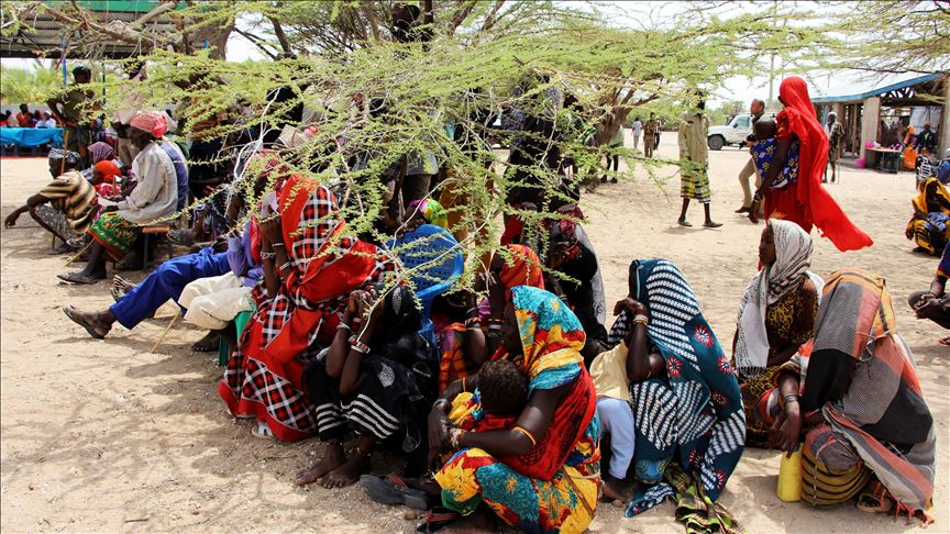 Food crisis looms as locusts invade northern Kenya