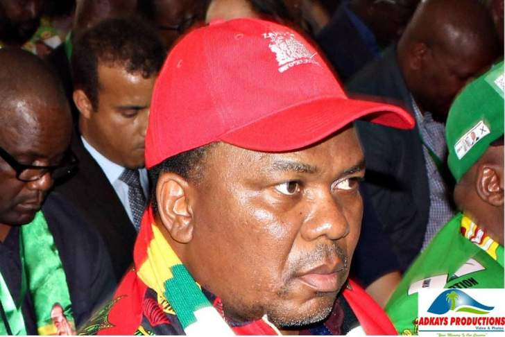 Zimbabwe descends into chaos and surges to a civil war without notice. The Mashurugwi Militia