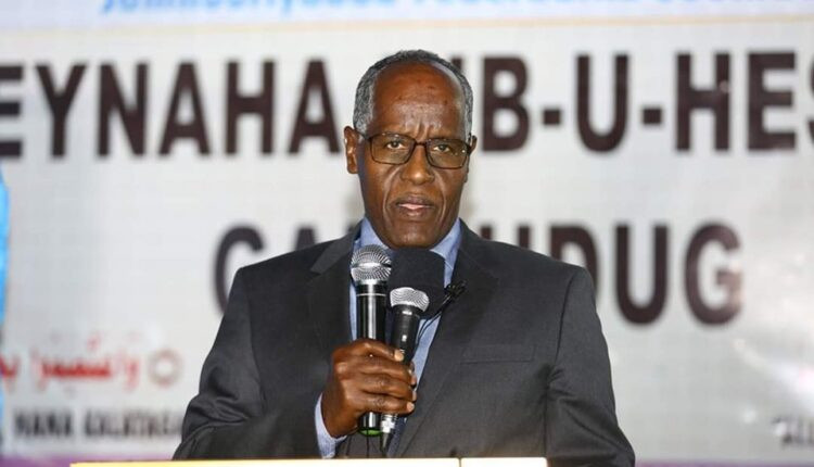Somalia, Somaliland Talks Went On As Planned - Federal Affairs Minister