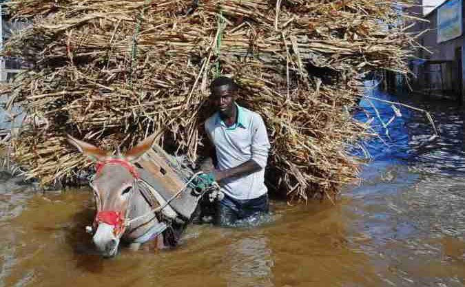 Somali Beledweyne city cut off by flooding