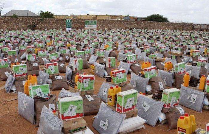KSRelief and migration body sign Somalia nutrition deal