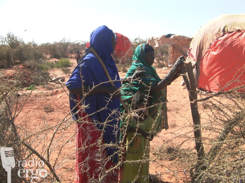 Land given to displaced Somali families in Burao