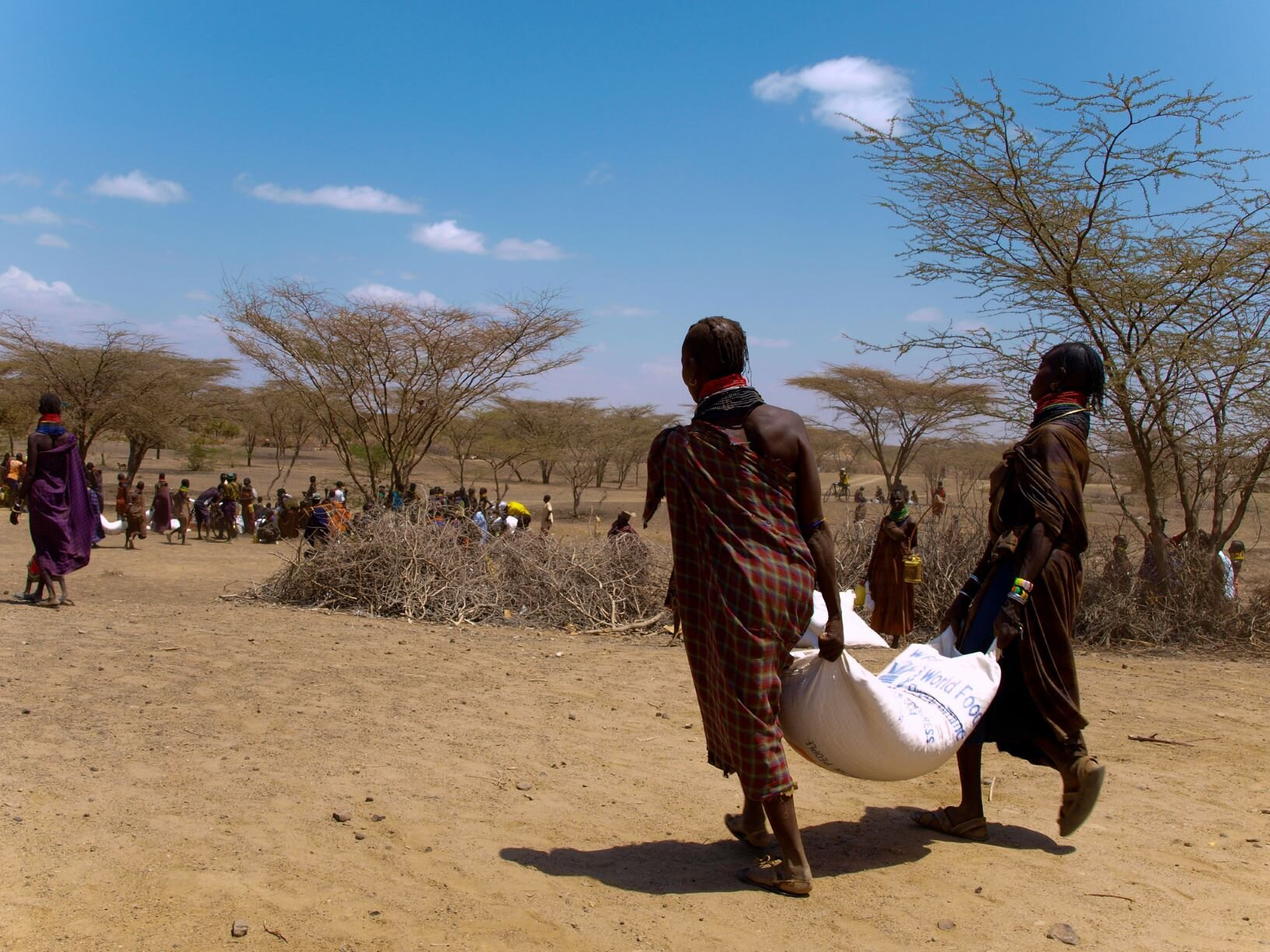 Monitoring conflict and climate could help stop famines before they happen